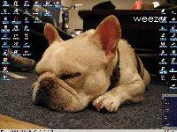 Desktop_05_09_04.jpg