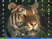 tigerdesk.jpg