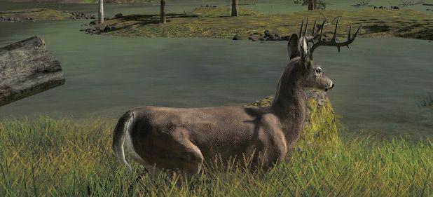 The Hunter 2012: Realistisches Jagen auf höchstem Niveau