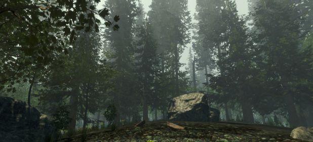 The Forest (Simulation) von