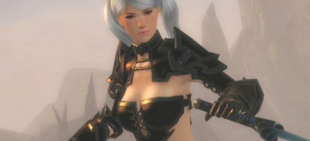 Guild Wars 2 (Rollenspiel) von NCSoft
