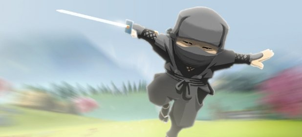 Mini Ninjas Adventures (Action) von Square Enix