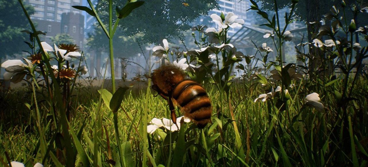 Bee Simulator (Simulation) von Varsav VR S.A.