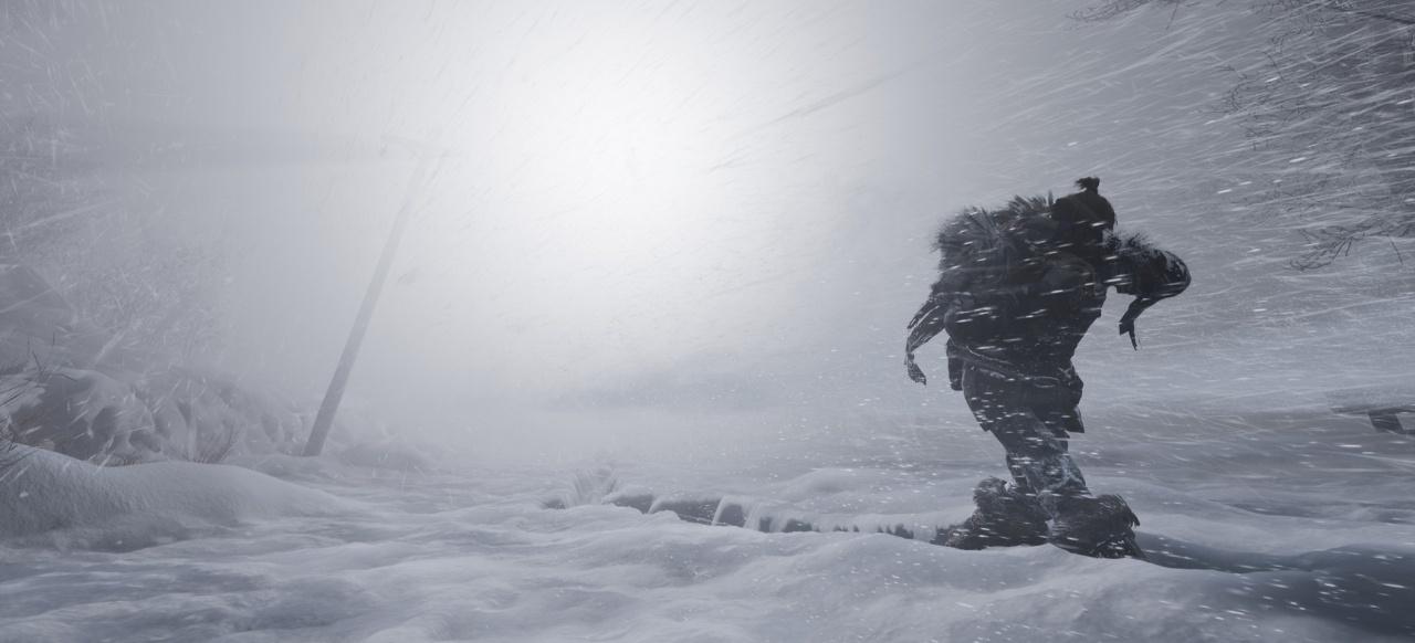 Fade to Silence (Simulation) von THQ Nordic
