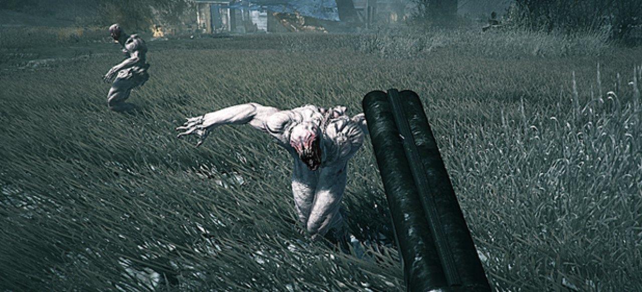 Ashen Rift (Action) von Pyroclastic Games