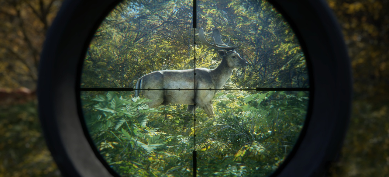 theHunter: Call of the Wild (Simulation) von astragon Entertainment GmbH