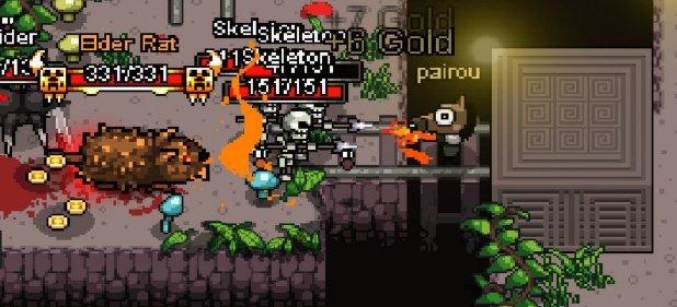 Hero Siege (Action) von Panic Art Studios