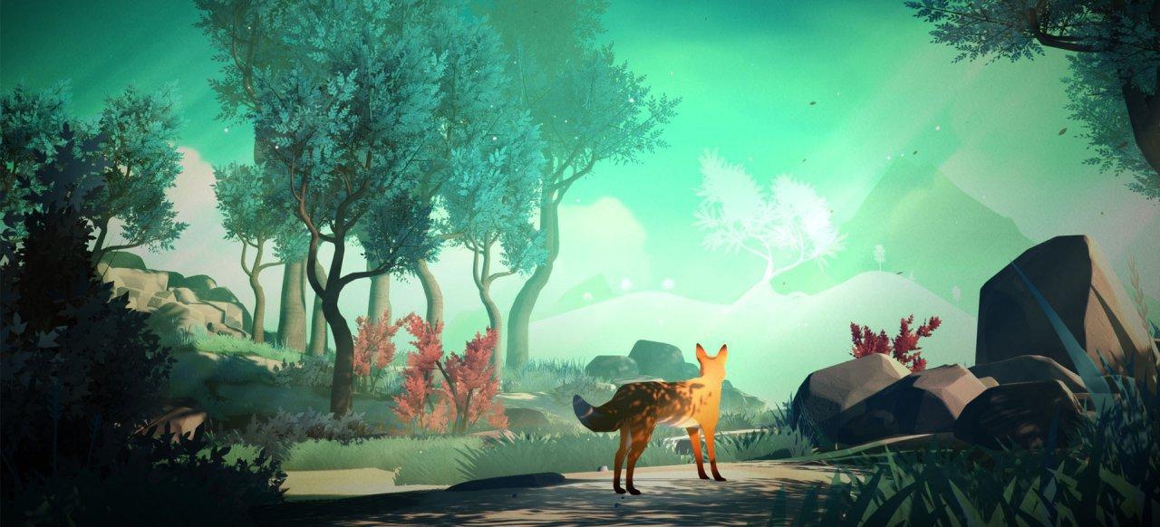 The First Tree (Adventure) von David Wehle