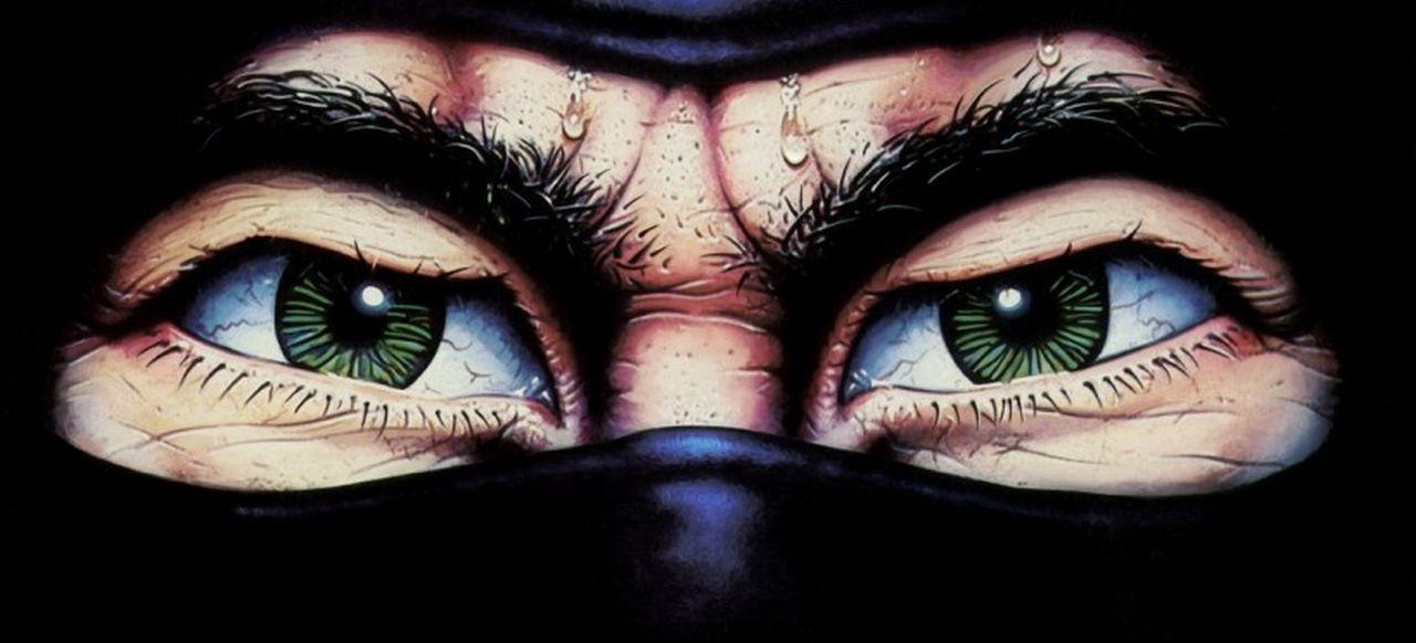 The Last Ninja (Geschicklichkeit) von Activision